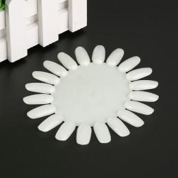 1 sztuk ozdoby do sztucznych paznokci natura wykres koloru porady wyświetlacz praktyka koła lakier żelowy UV okrągłe pokładzie n